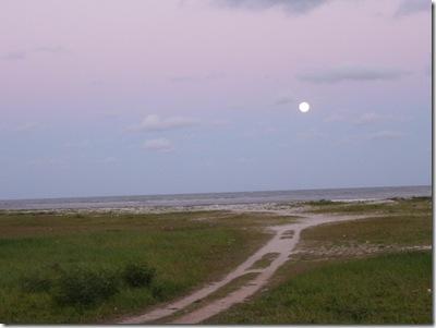Lua Cheia 21-10-2010 011 c