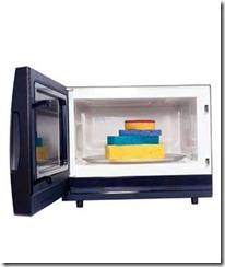 microwave-0_300