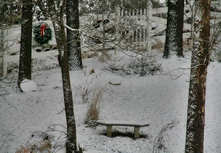 snow7A