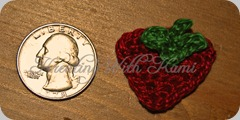 strawberry applique 06_13_10