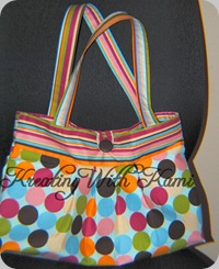 Strip Dot Purse 04_22_10