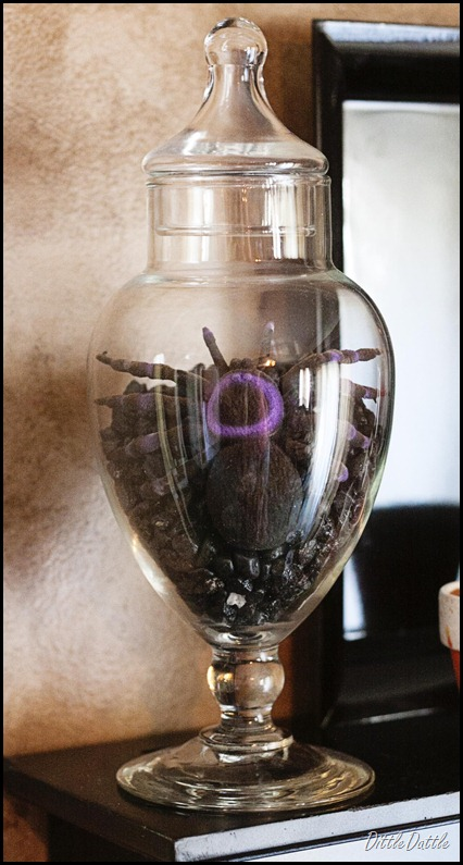 Halloween Ideas - Spider in a Jar