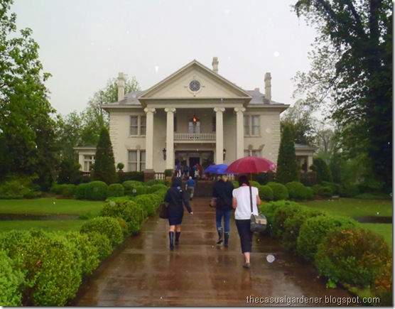 Marlsgate Plantation in the pouring rain