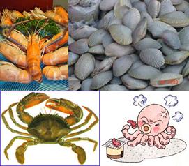 กุ้ง,หอย,ปู,ปลาหมึก