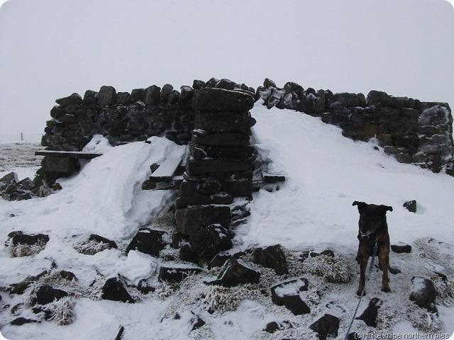 shunner fell summit shelter