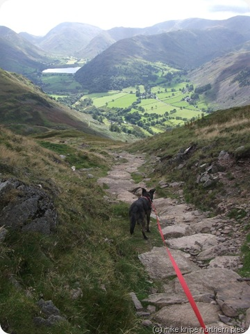 descending place fell