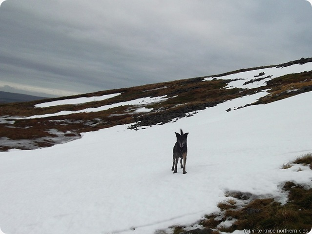 bruno and cross fell snow