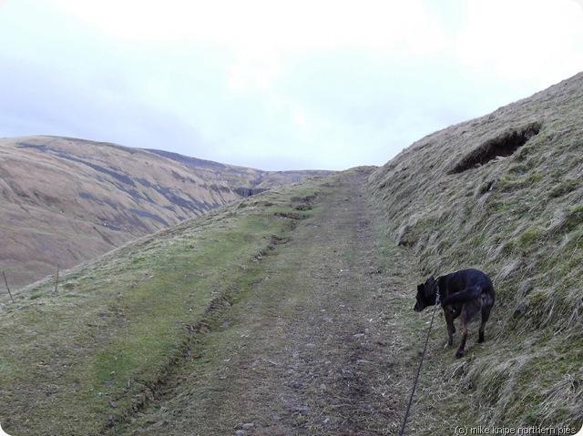bridleway up