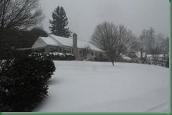 snow 121210 070