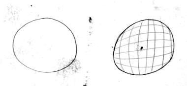 Linie betont Form