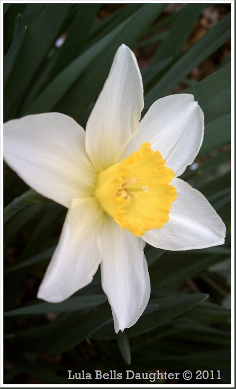 2011-03-20 2011-03-20 047
