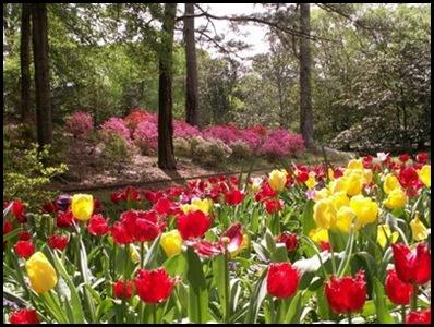 Callaway Gardens1