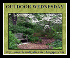 OutdoorWednesdaylogo54544