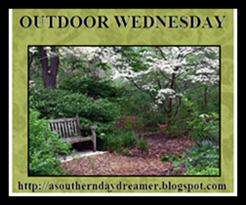 Outdoor Wednesday logo[5]