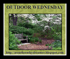 OutdoorWednesdaybutton5433
