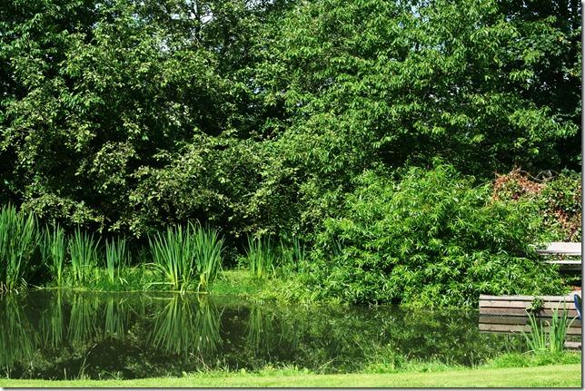 Danmark sommeren 2010 013