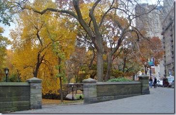 Central Park Fall 2
