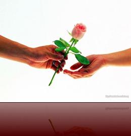 st-Valentine_19-355004