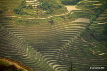 The dragon's backbone rice terraces seen from above, China