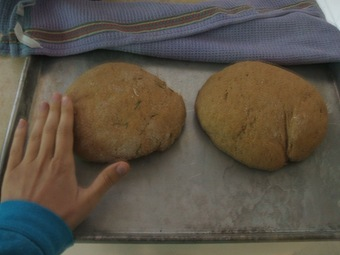 loaves postrise