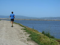 Home to Alviso Loop Logged 103.JPG