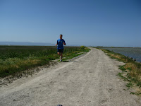 Home to Alviso Loop Logged 120.JPG Photo