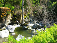 Sunol Regional Wilderness Hike 081.JPG Photo