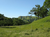 Sunol Regional Wilderness Hike 155.JPG Photo