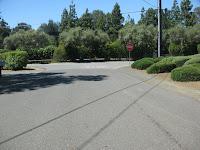 Foothill Bell Longer 004.JPG