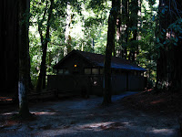Big Basin Redwoods State Park 014.JPG Photo
