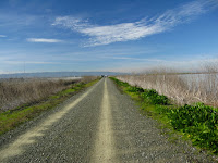 BayLands to BayFront 35M Bike Ride 034.JPG Photo