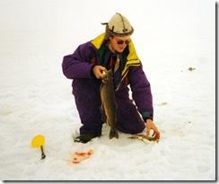 Arjeplogsfjällen 1995 (3)