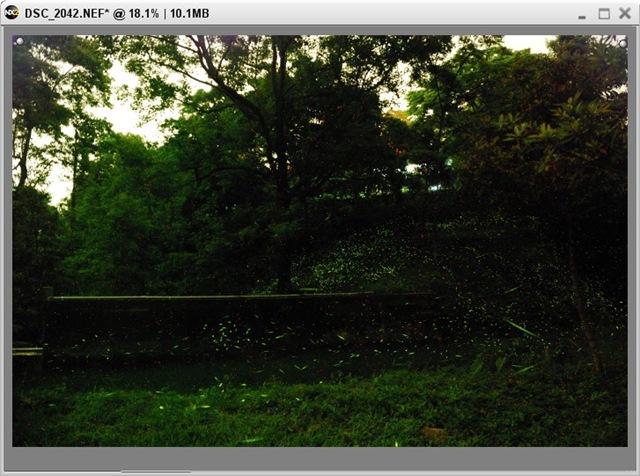 2010-04-24_025504