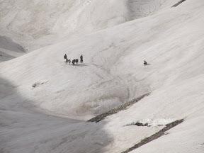 مسیری که به سمت بالای زرد کوه ادامه می یابد