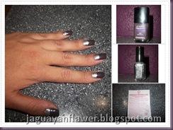 110501 - Purple n Silver