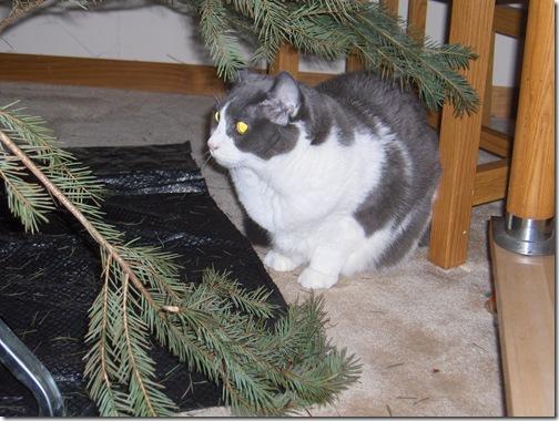 ChristmasandTreeTriming 178
