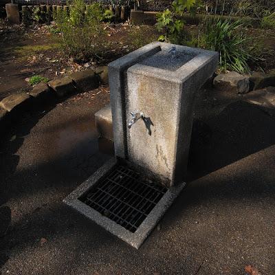 水飲み場:洗足池