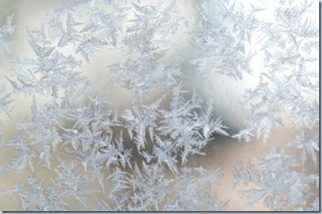 frosty_morning