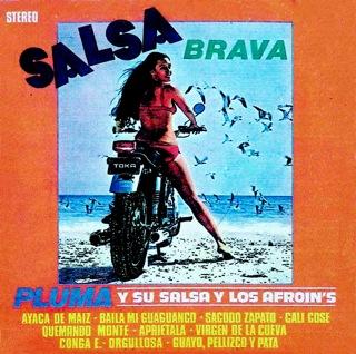 Salsa Brava 1