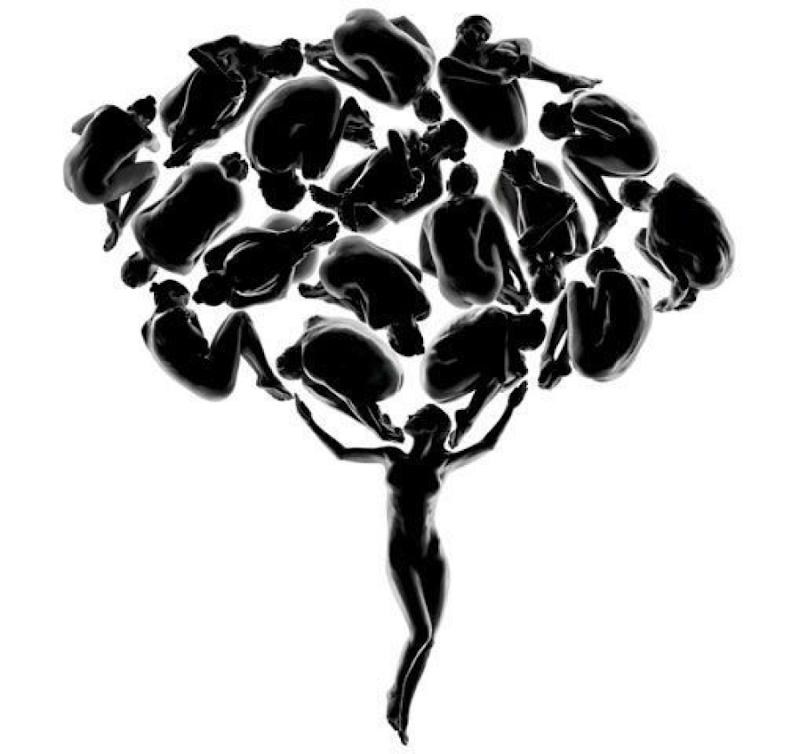 Гинекологическое дерево