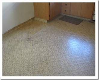 Eloise 9 months, Christmas 09, House Projects 095
