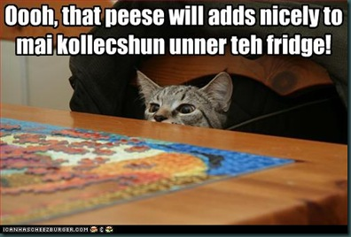 funny-pictures-cat-collects-puzzle-pieces
