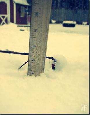 ruler in snow wm.jpeg