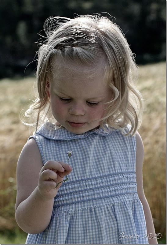 Kamilla I (10)