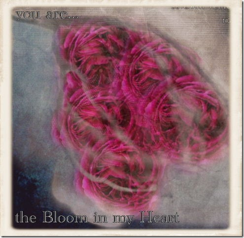 yu are the bloom in my heart FINAL JPEG