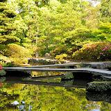尾山神社の池。