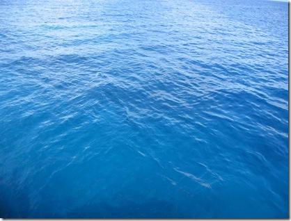 diving_ocean-792387