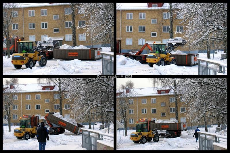 2011-01-14 snow
