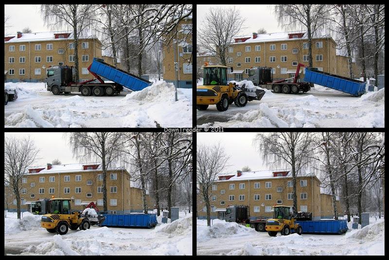 2011-01-14 snow1