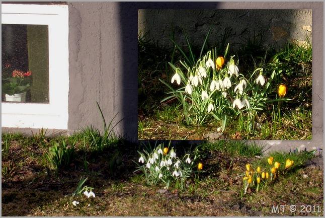 2011-03-24 spring